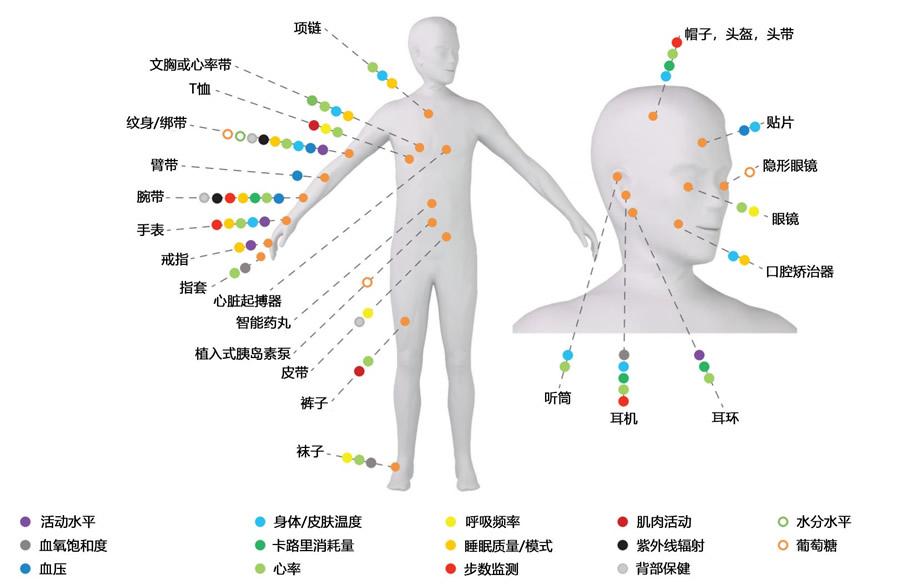 穿戴式和植入式电子设备应用于人体生理指标监测示意图