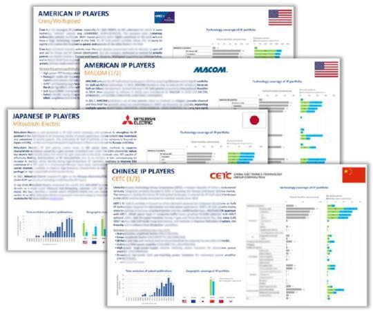 按地域细分的主要专利申请人分析