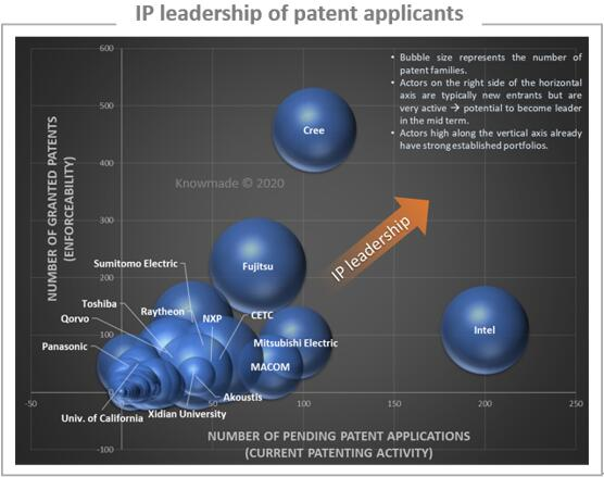 主要专利所有人的专利地位