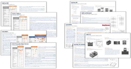 技术细分领域的专利分析