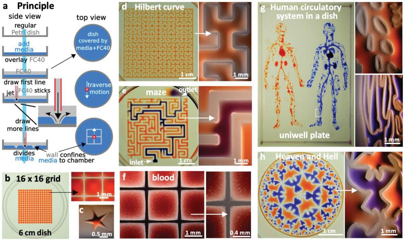 喷射印刷,构建复杂的微流控回路