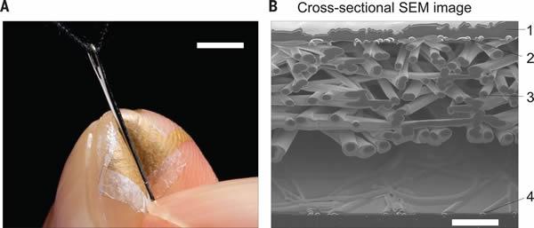 纳米网状压力传感器