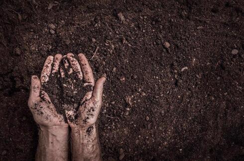 土壤感知如何帮助提高农业生产力