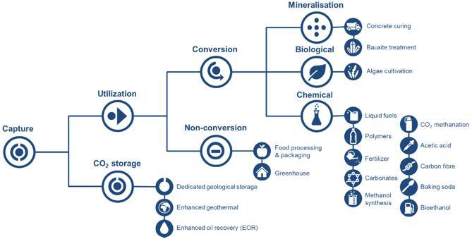 碳利用、碳储存的主要路径