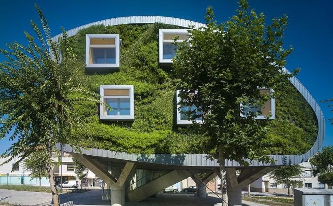 真菌腐化木材以增强压电效应,用于绿色建筑能量收集
