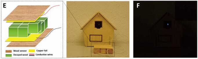 利用真菌处理过的木片在住宅模型中为商用LED供电