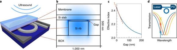 新型光机械超声传感器概念和创新的分脊(split-rib)波导