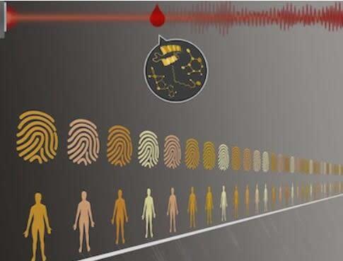 从血液中创建红外分子指纹