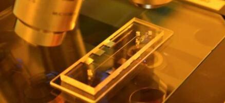 Archer生物芯片用途最初旨在解决呼吸系统感染性疾病的复杂检测