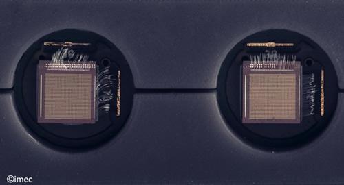 两颗基于压电MEMS超声波换能器(pMUT)的传感器集成在超声探头之中
