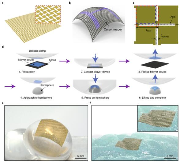 可拉伸剪纸结构和CAS印刷工艺