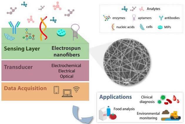 基于纳米纤维构建的生物传感器结构示意图