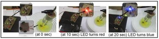 LED在NAC蒸气中不同暴露时间的颜色变化