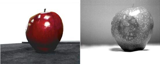 SWIR apple